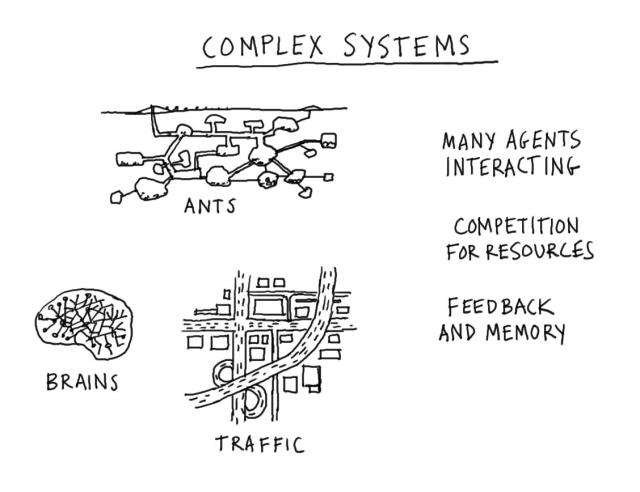 Figure 5. Characteristics of complex systems (Gray, D., Complex Systems, flickrCC)