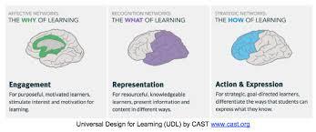 UDL brain