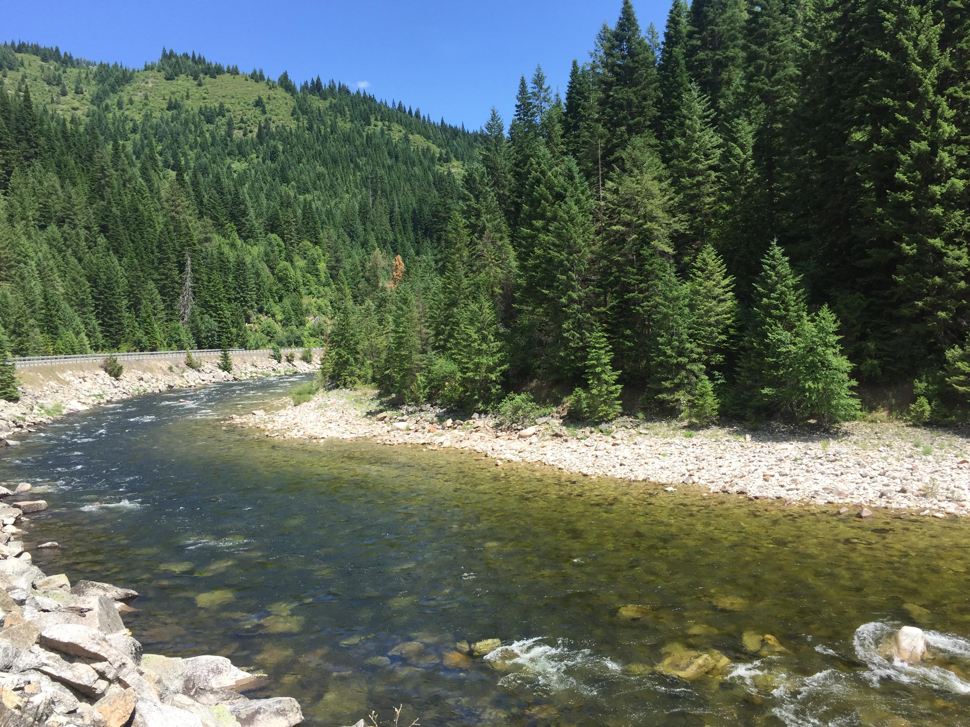Peter river